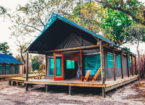 Safari tent accommodation