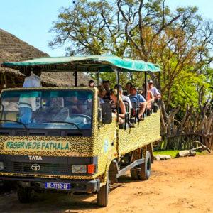 Fathala safari game drive