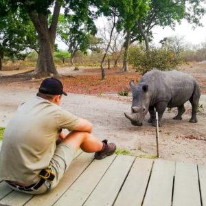 Rhino spotting on safari