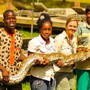 Holding big snake