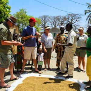 Senegal day tours & activities