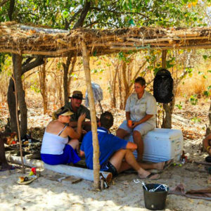Senegal island tour activities
