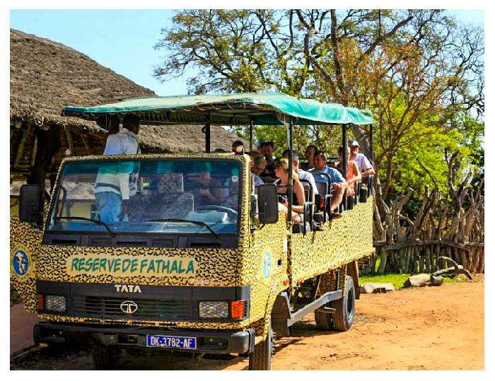 Fathala open safari vehicle