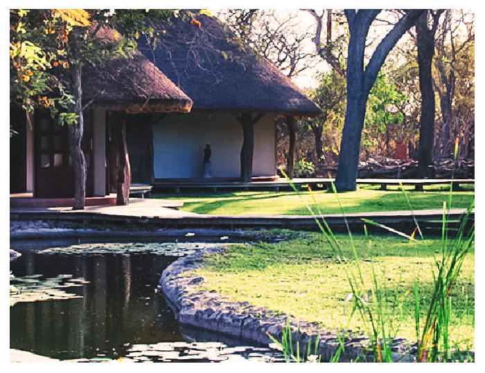Safari lodge water stream