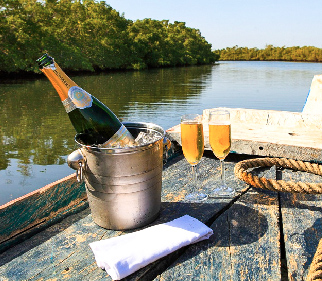 Mangrove boat cruise champagne