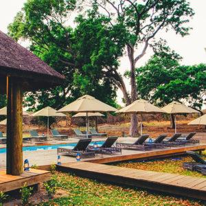 Safari lodge outdoor deck and pool