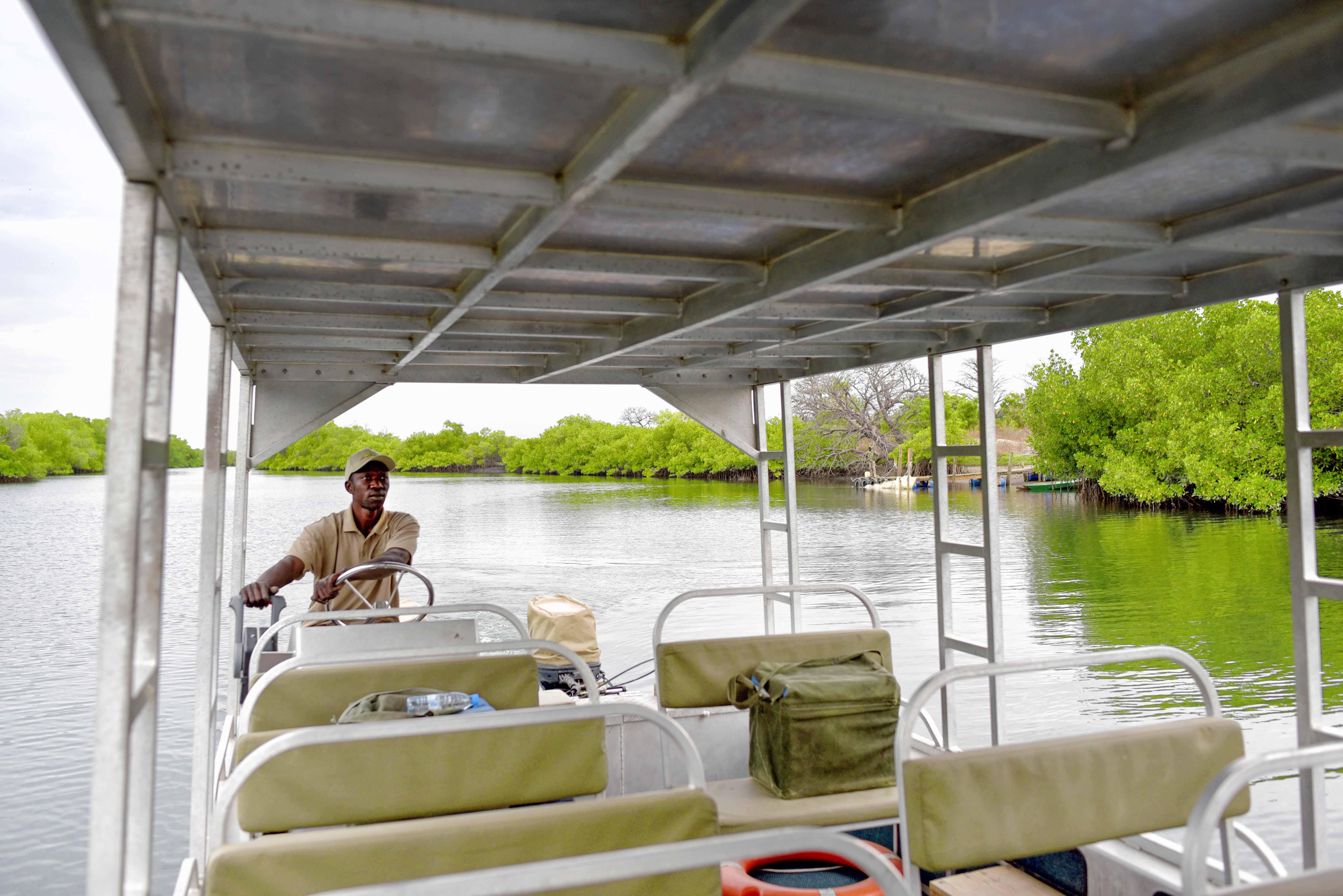 Senegal mangroves river boat cruise
