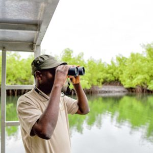 Senegal mangroves river boat tour
