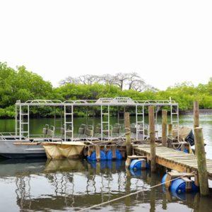 Senegal mangrove river boat cruise