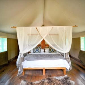 Luxury safari tent accommodation