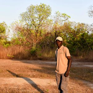 Senegal safari field guide