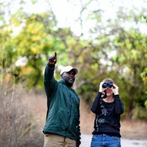 Walking safari guides