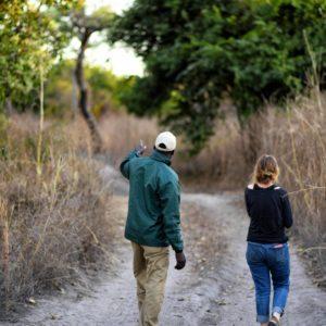 Senegal walking safari guide
