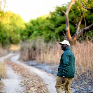 Walking safari guide