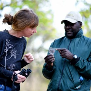 Walking safari tracker guide