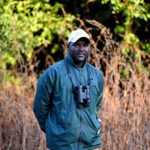 Senegal safari guide