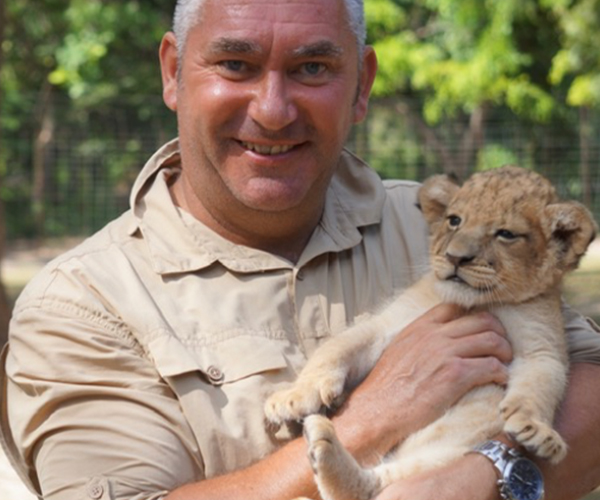 Baby lion cub with game ranger