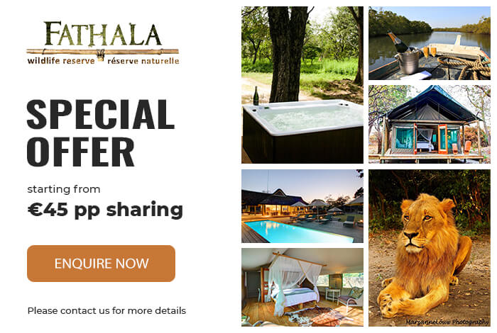 Fathala Special Offers 2020 1