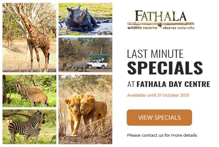 New Fathala Nov 2020 Special 1